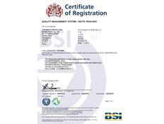必能信ISO/TS16949:2009认证证书